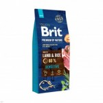 brit-premium-by-nature-sensitive-lamb-rice