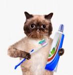 Higienos priemonės