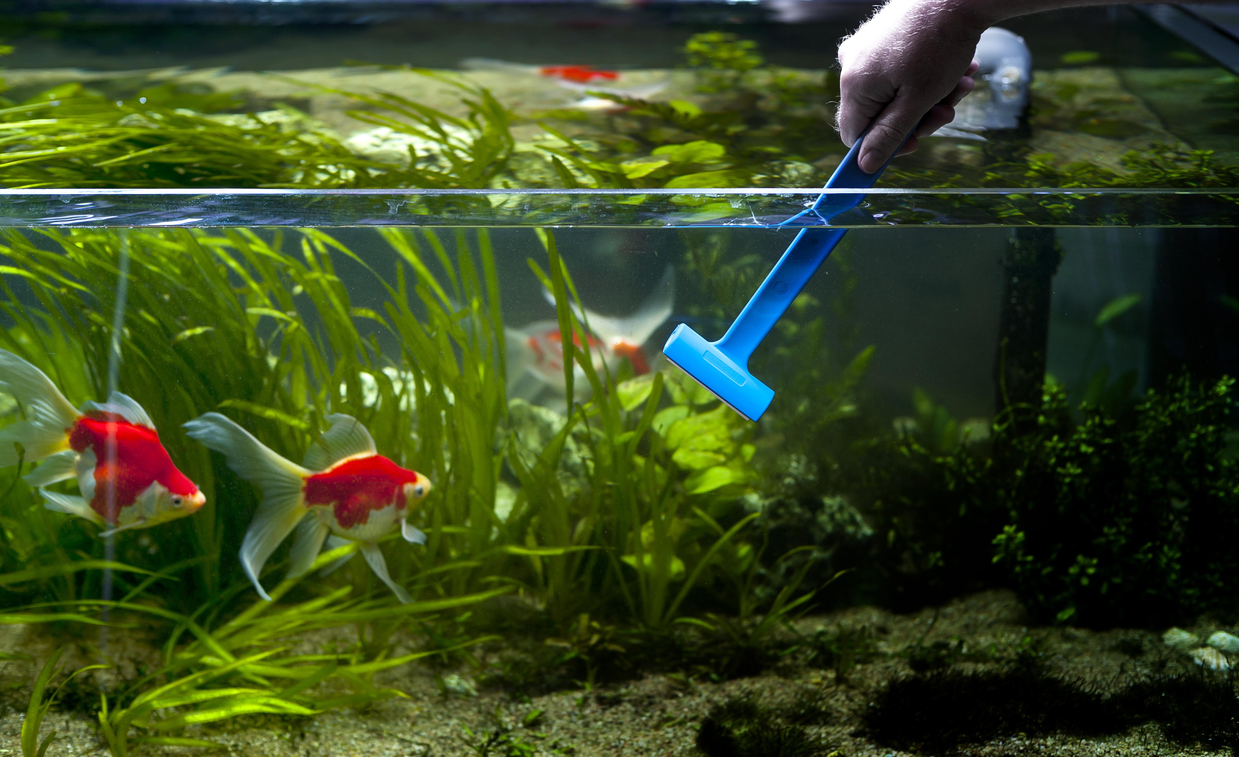 Как смягчить воду в аквариуме 75