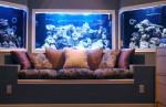 custom_tri_pane_aquarium