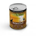 wetland-duck