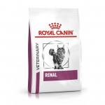 renal-feline-23-rf23-octf