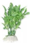 roslina-blister-10cm-1b25-happet