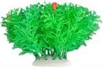 roslina-folia-10cm-1f06-happet