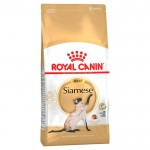 royal-canin-siamese-adult-1_2