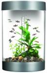 Akvariumo priežiūra