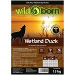 wetlands-duck