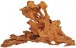 korzen-mangrowiec-l-happet-40-60-cm
