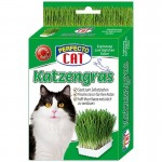perfecto-cat-katzengras-zol-katms-100g